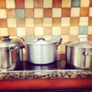 Tulip's- Pots cooking